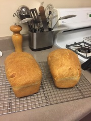 My first loves of bread